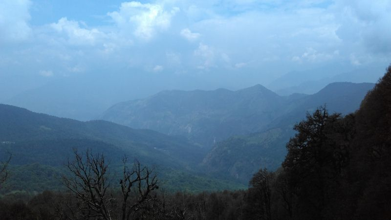 Chopta Valley View