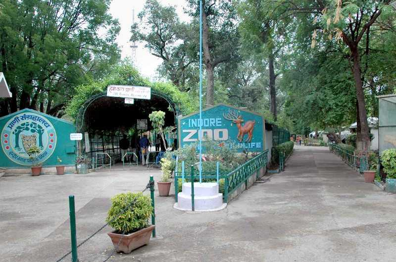 Indore Zoo Entry Gate