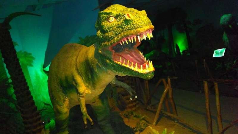 Dinosaur Exhibition in Science Museum Delhi