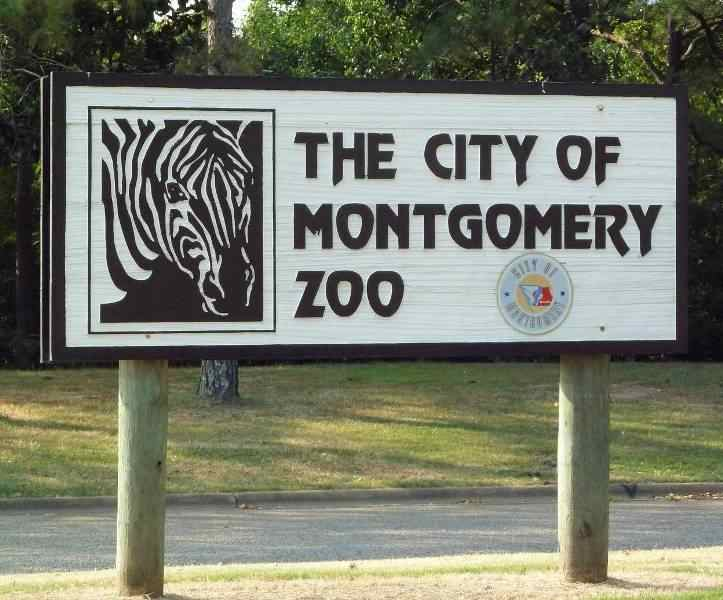Montgomery Zoo Alabama