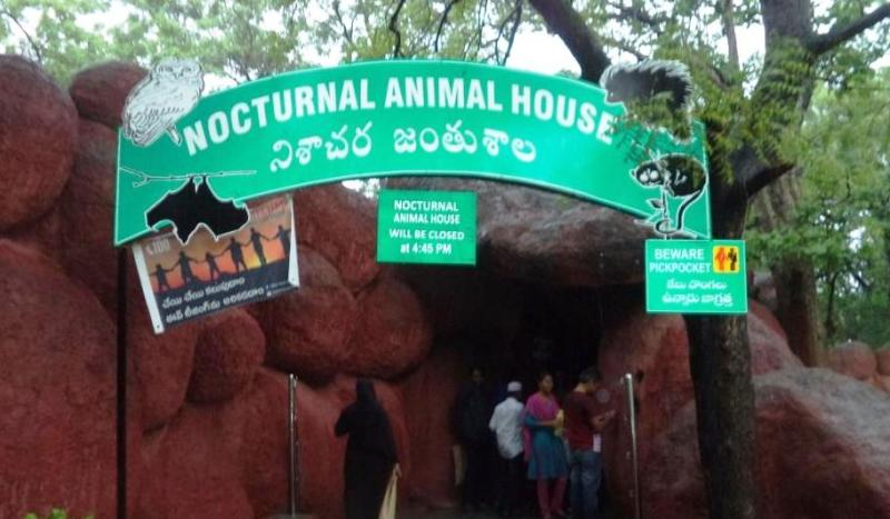 Nocturnal House inside Hyderabad Zoo
