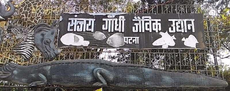 Sanjay Gandhi Jaivik Udyan - Patna Zoo