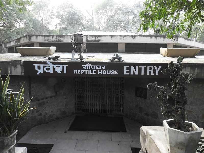 Reptile House Delhi Zoo