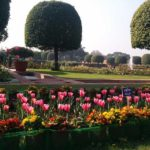 Mughal Garden Delhi 2018 Dates, Entry Fee, Timings and Information