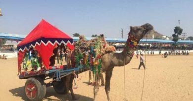 Hotels in Pushkar Fair 2018