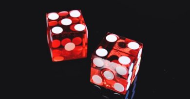 Casinos: A Booming sector in India