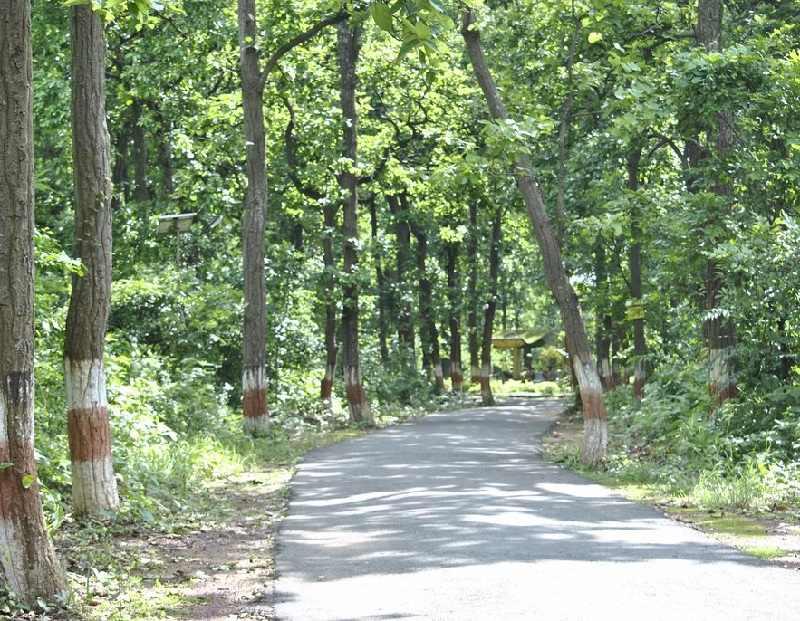 bhagwan birsa biological park